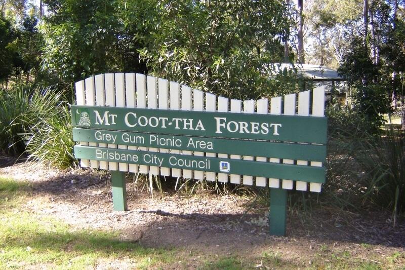 Brisbane's Mount Coot-tha Forest Grey Gum Picnic Area. Photo source: Judith Salecich 2016.