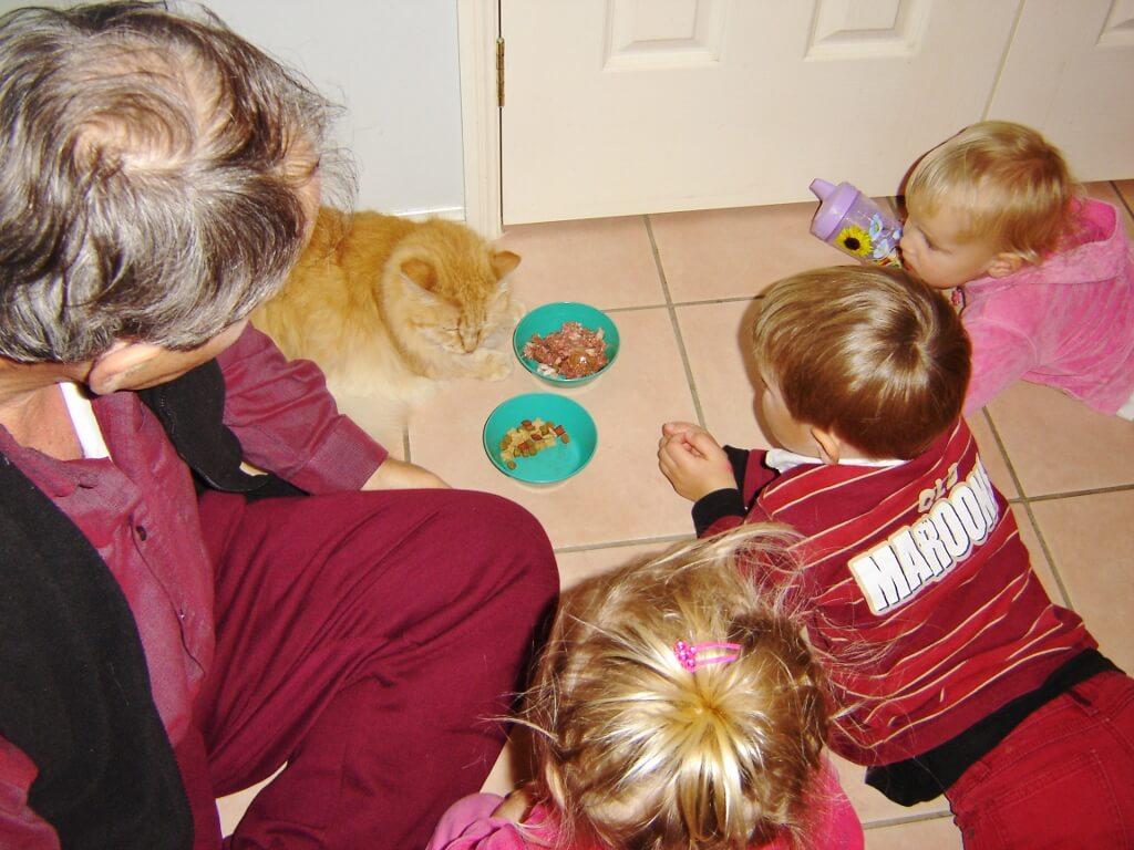 The ritual of feeding Kitty