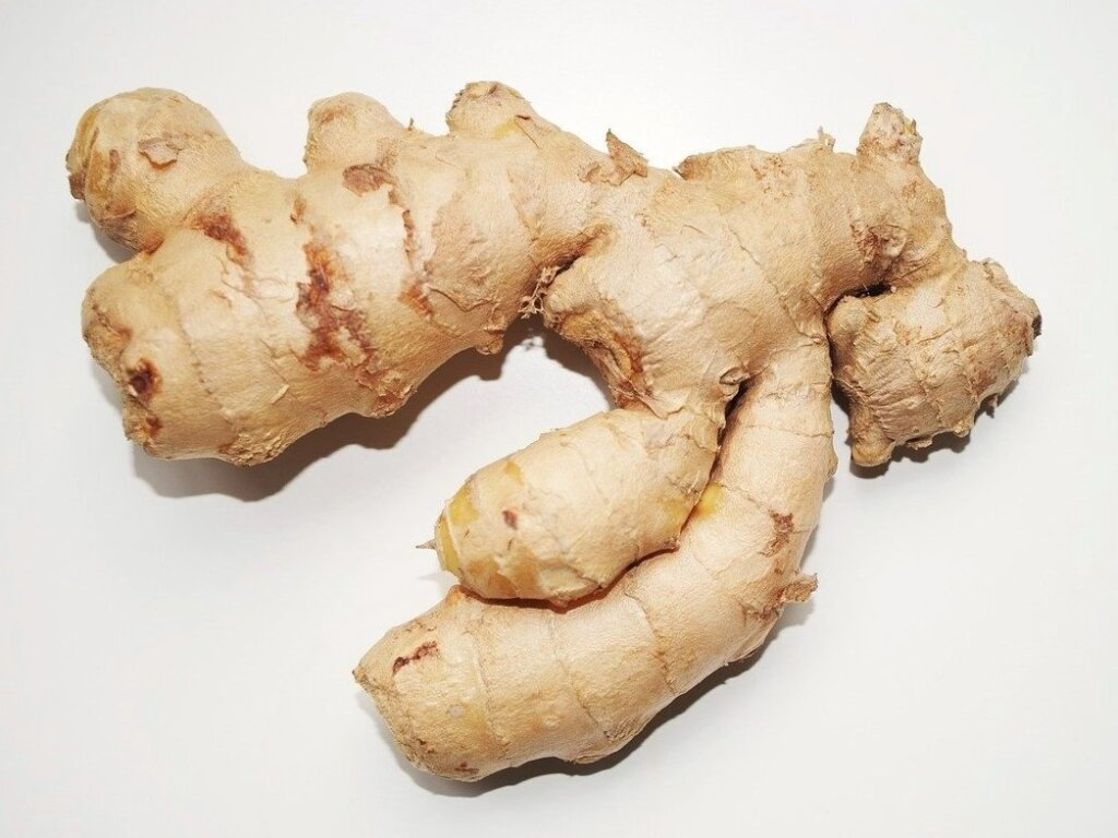 Green ginger. Photo source: Flickr. Public domain.