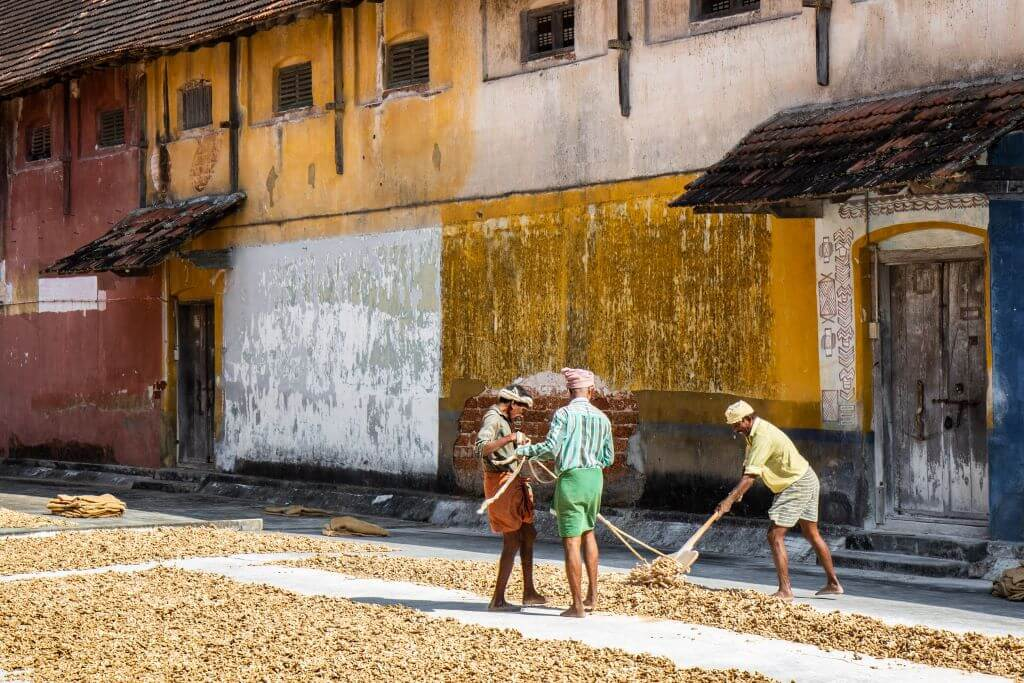 Workers drying ginger, Kerala, India. Photo source: Ariel Pilotto, on Unsplash.